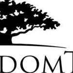 【DGS】ウィズダムツリー 新興国小型株配当ファンドについて